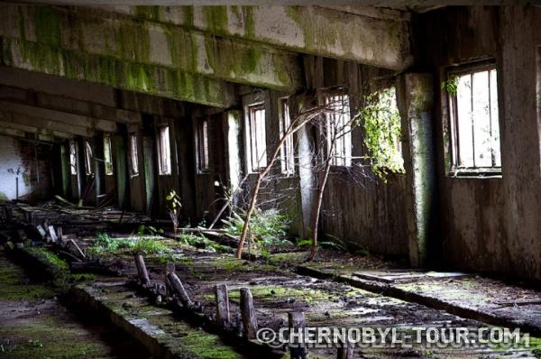 Заброшенная ферма неподалёку Чернобыля в с. Залесье.